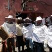 De l'organisation des ruches et des entreprises