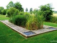 AQUATIRIS , des jardins d'assainissement écologiques et esthétiques