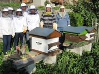 Cohésion d'équipe autour des ruches