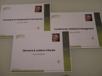 Trois plaquettes pour les trois prestations de Mélilot Consulting