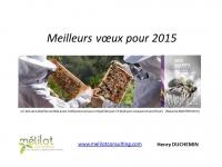 Vœux 2015 avec des abeilles